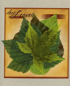 BULK QUANTITIES OF 60, 80 or 100 parchment paper food safe Deco Spring leaves are available in this listing. You may choose a quantity from the