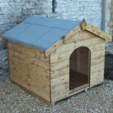 Classic Kennels Fantail Pigeon, Apex Roof, Fascia Board, Roof Overhang, Through The Roof, Two By Two, Shed, Classic, Derby