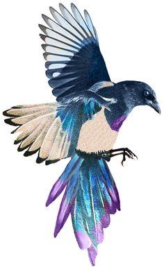 Hoi! Ik heb een geweldige listing gevonden op Etsy https://www.etsy.com/nl/listing/102545634/magpie-temporary-tattoo-8x5cm