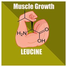 Leucine