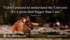 "themindquotes.com : Thomas Carlyle Quotes on Funny and Life""I don't pretend to understand the Universe – it's a great deal bigger than I am."" ~ Thomas Carlyle"