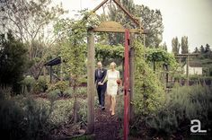McMenamins Edgefield Wedding Photography — Jenny + Chris | Alyson Levy Photography bride and groom photos in #communitygardens