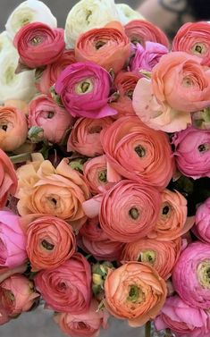 Wholesale Flowers Near Me | Bulk Flowers Rose Like Flowers, Flowers For Sale, Beautiful Flowers Garden, Burgundy Flowers, Birth Flowers, Pretty Flowers, Colorful Flowers, Ranunculus Wedding Bouquet, Ranunculus Flowers