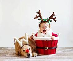 #dog #child at #xmas