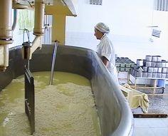 Elaboración de quesos en Rusia