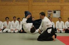 Aikido Training Budokan Wels Jänner 2013: Hamnihandachi Waza Kokyo nage