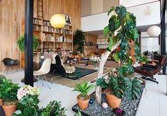Eames House Case Study #8: Indoor Garden Inspiration