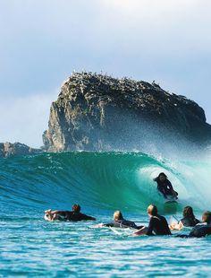 Surf and Skate Shameless Plug, Surf City, Surf Style, Surfs Up, Nature Wallpaper, Ocean Waves, Surfboard, Coastal, Surfing