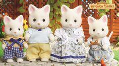 La famille Chat Soie
