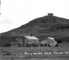 Piute homes near Fallon, Nevada :: Special Collections Photographs