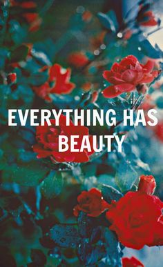 Everything Has Beauty life quotes quotes quote beautiful life quote beauty