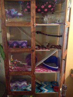 4 Story Bookshelf Rat Cage