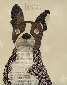 the boston bulldog  modern cool metal print