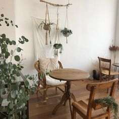 나주카페 러스틱. 나주혁신도시 카페 추천 : 네이버 블로그 Interior Plants, Cafe Interior, Interior Design Living Room, May House, Coffee Shop Design, Interior Accessories, Interior Design Inspiration, Furniture Decor, Room Decor