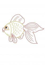 Золотая рыбка. Раскраска