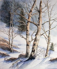 Winter Birch - WetCanvas