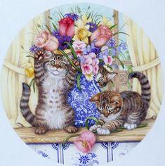 Belles images  de chats