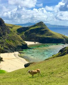Sabtang Island Batanes ---Photo by Voyage Philippines, Philippines Vacation, Philippines Culture, All About Hawaii, Batanes, Local Tour, Vacation Places, Travel Goals, Amazing Destinations