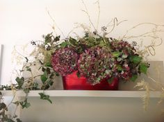 Dried Hydrangea with ivy and gold asparagus   @ The Quince Tree -Christmas decorations
