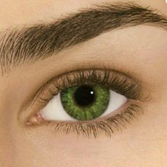 FLASH SALE GEMSTONE GREEN COLOR CONTACTS Color Contacts Exp 12/19 FreshLook  Makeup