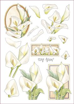 sympathy on Pinterest | Card Making, Decoupage and Deepest Sympathy