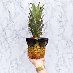 hunkemoller - Be a P I N E A P P L E: Stand tall, wear a crown, and be sweet on the inside ?? #MyEndlessSummer #quote #sunglasses #pineapple