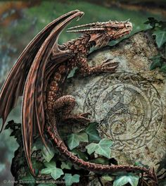 I have to buy some dragons for my gardens.