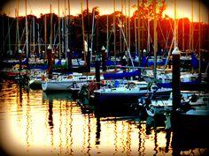 Harbor in Santa Cruz, Ca