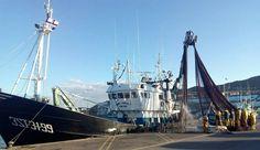 Actividad en el puerto pesquero en esta mañana de viernes. #santoñateespera #turismosantoña