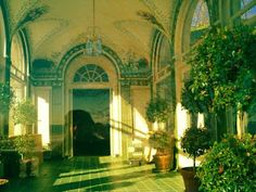 The conservatory , in the Harkness Mansion, Eolia