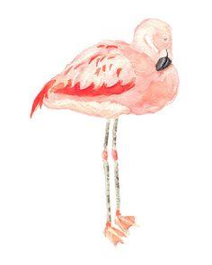 Flamingo Watercolor Art Print