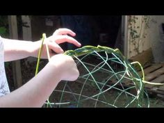 ▶ Capybara enrichment, feeders and substrate - YouTube
