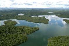 Parque Estadual do Rio Doce – Municípios de Marliéria, Dionísio e Timóteo, MG – Crédito: Carlos Alberto – 26/01/2008