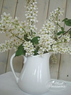 White lilacs from my garden