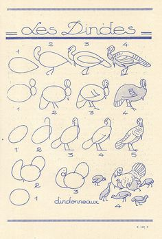 les animaux 73 by pilllpat (agence eureka), via Flickr