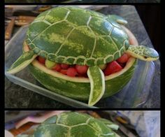 Cuisine / Watermelon Sea Turtle