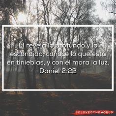 Él revela lo profundo y lo escondido; conoce lo que está en tinieblas, y con él mora la luz. Daniel 2:22 #Jesús #Dios #Padre #EspírituSanto #Evangelio #Biblia #Vida #Amor #Jesusontheweb #Ideas #solovedtheworld