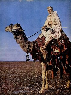 """Peter O'Toole in """"Lawrence of Arabia"""" (1962)"""