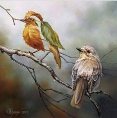 Novelicious (@noveliciouss)   Twitter#Art Oleg Shuplyak
