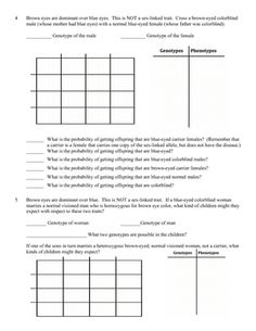 Genetics Problem Worksheet: Sex linked genes (Sex linkage).  This product is a 7 page practice problem worksheet on sex-linked genetic traits. There is a wide variety of problems that cover colorblindness, hemophilia, eye color in fruit flies, etc. There are 19 problems and many of these 19 problems have numerous questions that must be answered. All of the problems involve sex linkage and sex-linked genes. $