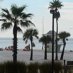 Where are you thinking of going today? Join us!! #GrayLine #Orlando #FindAReasonToGo #graylineorlando #InstaTravel #TravelBug #Wanderlust #TravelGram #beach #saltlife #beachlife #lovefl