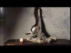 A little Death - Sam Taylor-Wood