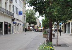 Centre ville d'Agen : le marché aux fleurs de la Place Wilson...