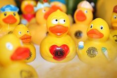 Heidelberg Campus Lions Club Germany - Lions are gearing up for the Heidelberg Rubber Duck Race on June 16. This race is a great fundraiser for the club.