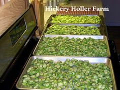 Hickery Holler Farm: Blanching Okra And Freezing Breaded Okra Freezing Vegetables, Canning Vegetables, Frozen Vegetables, Fruits And Veggies, Freezing Fruit, Vegetable Cake, Vegetable Prep, Vegetable Dishes, Okra Recipes