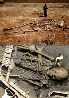 Mysterious Look at Giant Human Skeletons from Around the World - TechEBlog