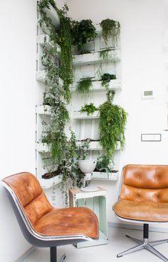 Recycled pallet wall garden ; Gardenista