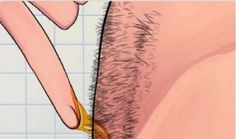 No Waxing Or Shaving - How To Naturally Remove Body Hair Permanently