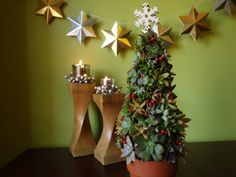 How to make a mini succulent living Christmas tree using a chicken wire frame and succulent cuttings.