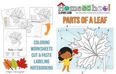 This FREE Leaf Study set includes a parts of a leaf chart and labeling worksheet, cut and paste activity page, coloring page & notebooking pag